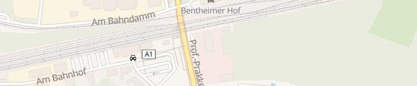 Karte Professor-Prakke-Straße Bad Bentheim
